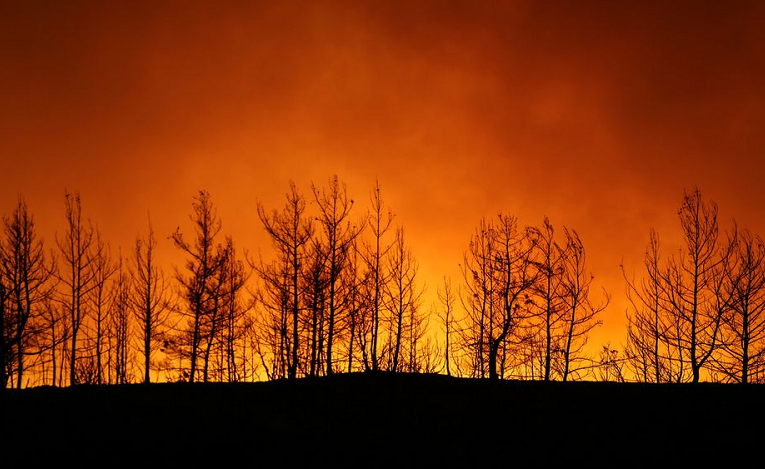 At least four killed as wildfires sweep Turkey, villages evacuated